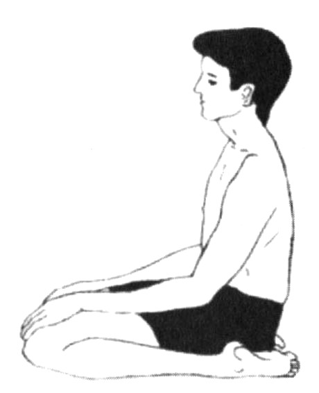 http://www.herenow4u.net/fileadmin/v3media/pics/Books_online/Techniques_of_Prekshadhyan/Vajrasan__Diamond_posture_.jpg